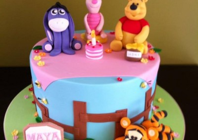 1st Birthday Cakes