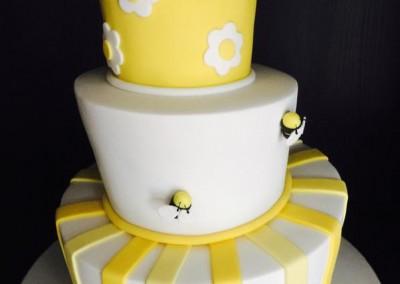 Topsy Turvy Cakes